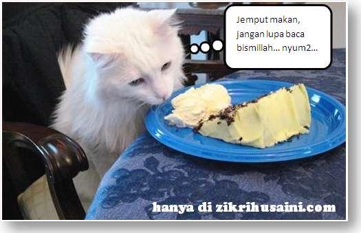 kucing tunggu zik, cat eat cake, kucing jilat kek, kucig makan kek,
